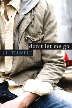 Dont let go book cover image