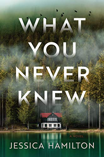 What You Never Knew book cover