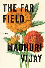 The far field book cover